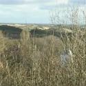 En lille film om Anholts natur